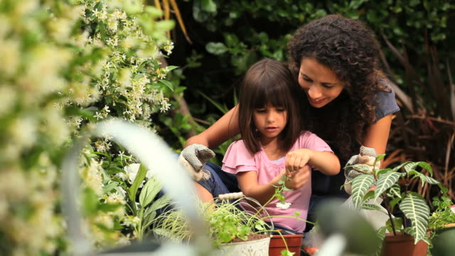 Young woman helping little girl to pot a flower / Cape Town, Western Cape, South Africa