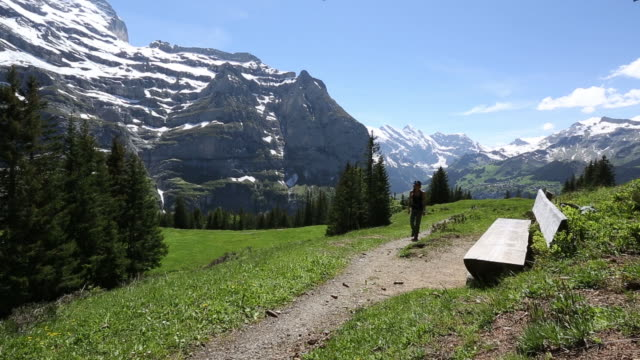 vidéos et rushes de a young woman hiking in the swiss alps - one mid adult woman only