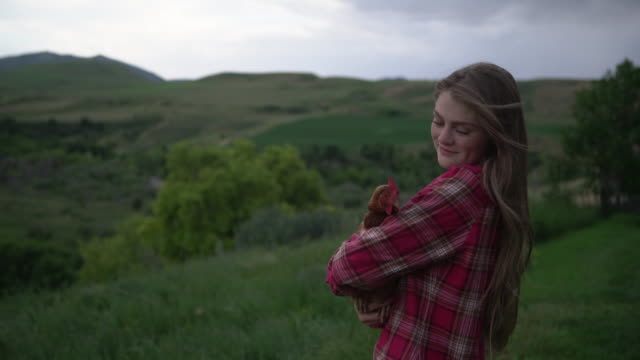 ms young woman holding a chicken in her arms - chicken bird stock videos & royalty-free footage