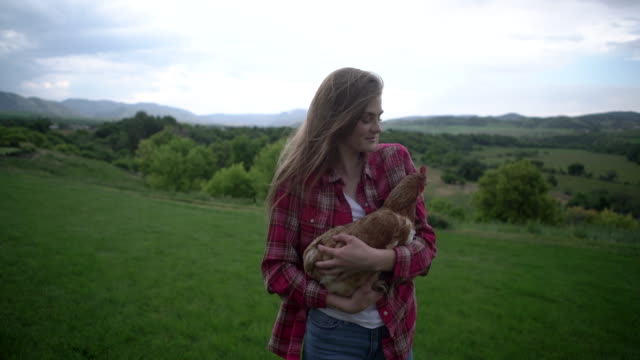 ms young woman holding a chicken on a farm - tutti i tipi di top video stock e b–roll