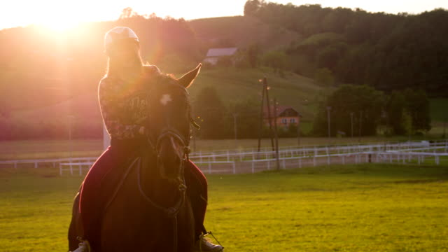 stockvideo's en b-roll-footage met young woman horseback riding at sunset - recreatief paardrijden