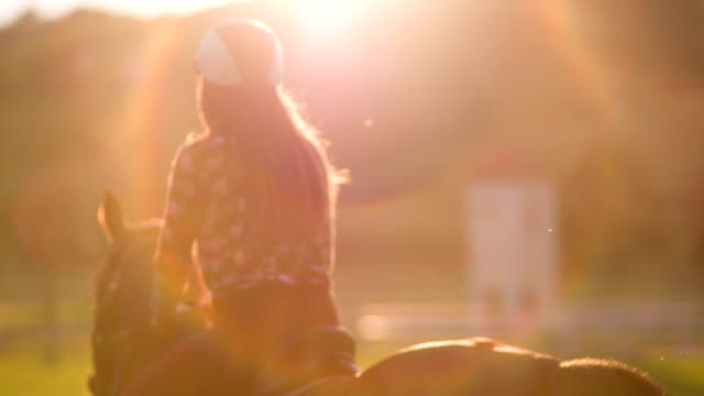 young woman horseback riding at sunset - all horse riding stock videos & royalty-free footage