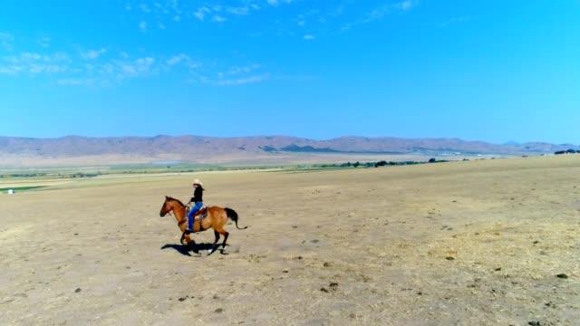 stockvideo's en b-roll-footage met jonge vrouw paardrijden - prairie