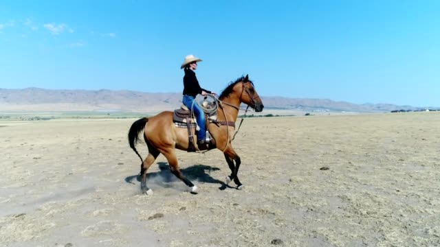 young woman horseback riding - prairie stock videos & royalty-free footage