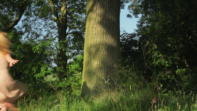 ws young woman hugging tree trunk in meadow / london, uk - tree hugging stock videos & royalty-free footage