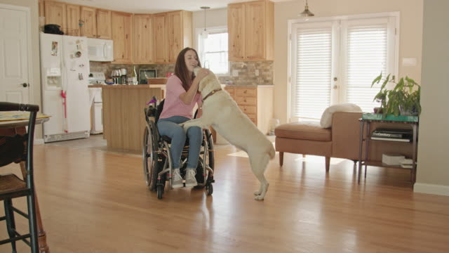 Young Woman in a Wheelchair Interacts with her Dog