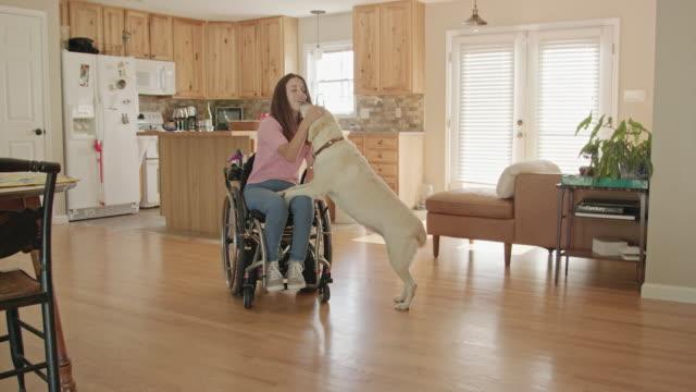 vídeos y material grabado en eventos de stock de mujer joven en una silla de ruedas que interactúa con su perro - expresión facial