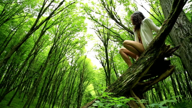 Young woman in beech forest