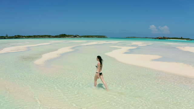 young woman in bikini walking on tropical beach - bahamas stock videos & royalty-free footage