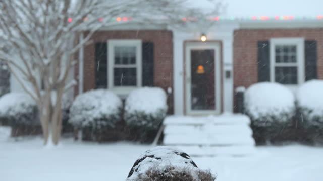vídeos y material grabado en eventos de stock de ms td young woman in front of house looking up at falling snow / richmond, virginia, usa - abrigo de invierno