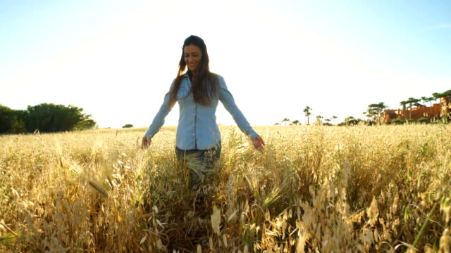 young woman in the midle of a cereal field - one mid adult woman only stock videos & royalty-free footage