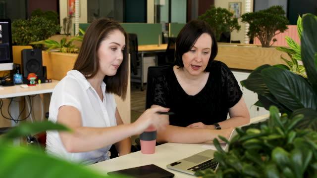 vídeos y material grabado en eventos de stock de mujer joven en silla de ruedas colaborando con colega en la oficina moderna - empresa de carácter social