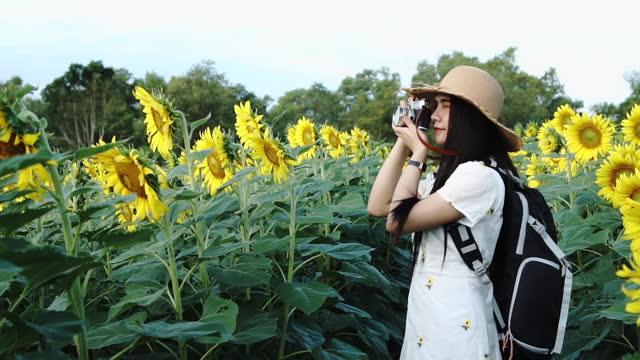 白いドレスを着た若い女性はヒマワリ畑で楽しんでいます。 - 白のドレス点の映像素材/bロール