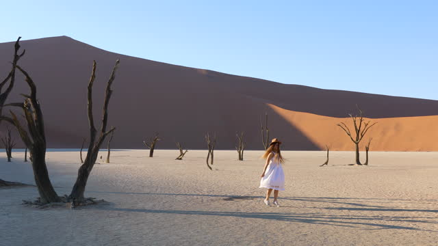 young woman in white dress exploring deadvlei dead lake with trees in the desert in namibia, africa - white dress stock videos & royalty-free footage