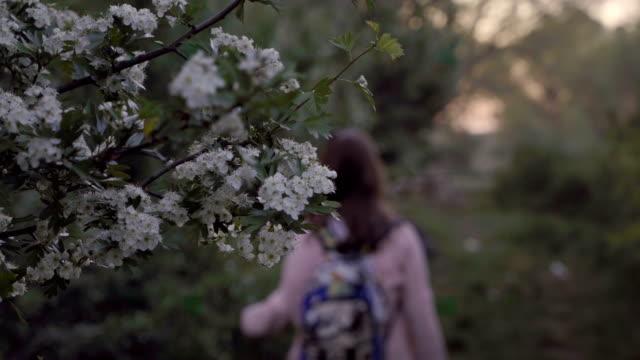 vidéos et rushes de jeune femme est en voyage dans la forêt - équitation de loisir