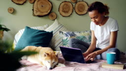 Young woman is using laptop shopping online typing and looking at screen while adorable puppy is lying near her on bed in modern apartment. Internet and youth concept.
