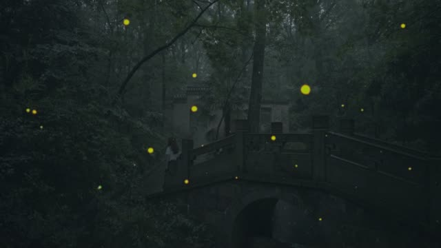 a young woman is walking in the firefly forest - 蛍点の映像素材/bロール