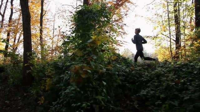 vídeos y material grabado en eventos de stock de young woman jogging through forest - corredora de footing