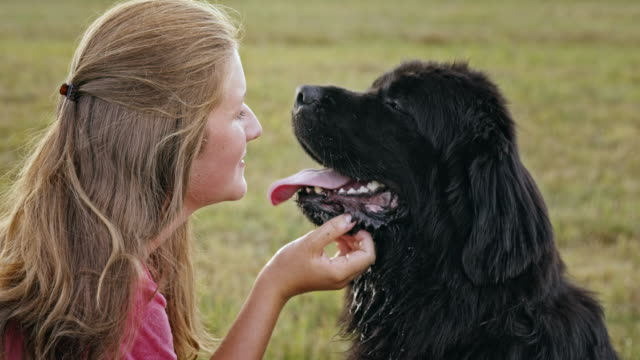 SLO MO LD Young woman kissing her dog on the nose