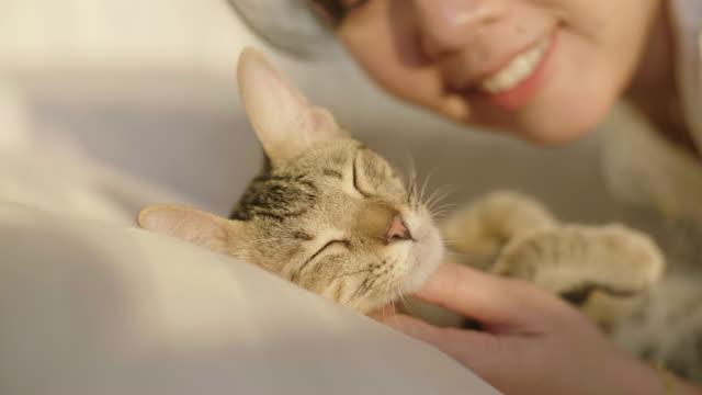 vidéos et rushes de jeune femme embrassant son chaton d'animal familier sur le lit blanc dans la chambre à coucher. - loisir
