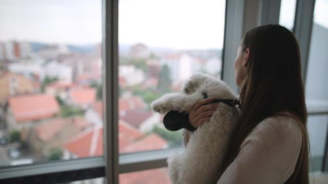 新しい家で犬を抱きながら窓を見ている若い女性 - 窓越し点の映像素材/bロール