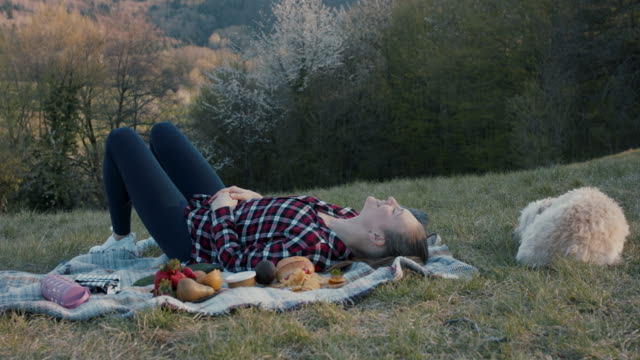 young woman lying on picnic blanket on hill with dog - picnic stock-videos und b-roll-filmmaterial