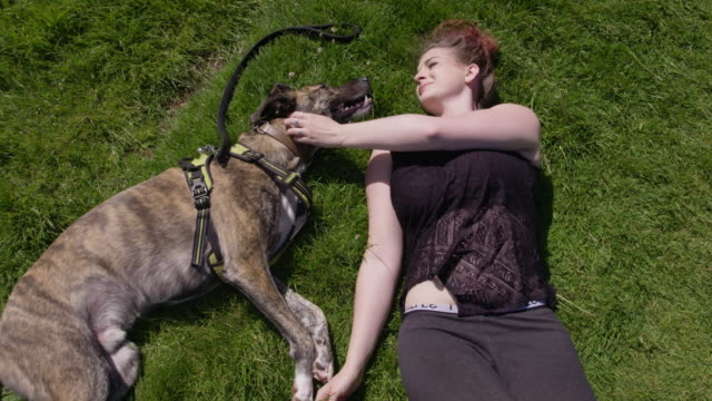 young woman lying with her pet dog in a green meadow - care stock videos & royalty-free footage