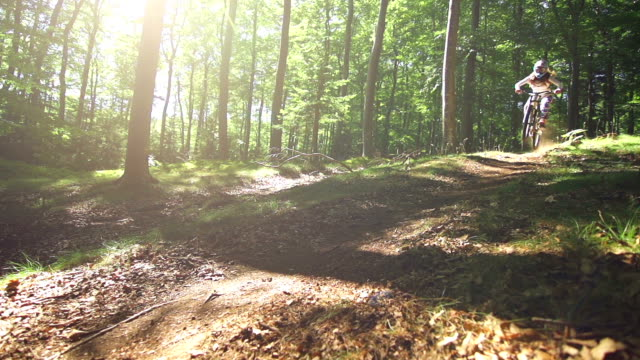 young woman mountain biking through a forest - motorcycle biker stock videos & royalty-free footage