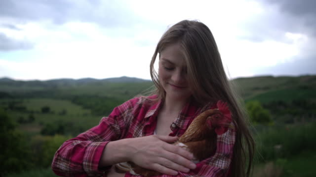 cu young woman petting a chicken outdoors - checked pattern stock videos & royalty-free footage