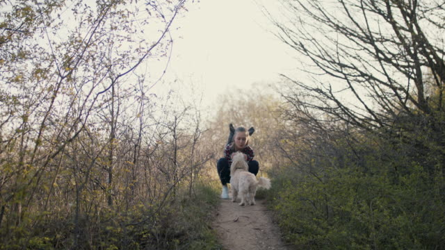 young woman petting, kissing, laughing with dog in nature - haustierbesitzer stock-videos und b-roll-filmmaterial