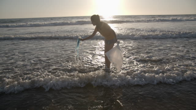 young woman picking up trash on the beach - water pollution stock videos & royalty-free footage