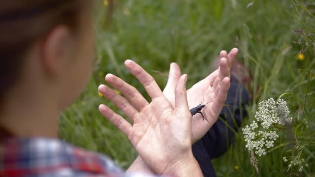 vidéos et rushes de young woman playing with a large black beetle crawling on hands - découverte