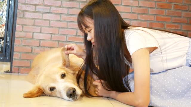 犬、ゴールデン ・ リトリーバーを演奏若い女性 - ペット点の映像素材/bロール