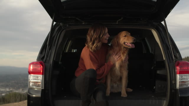 ms young woman playing with her dog in the back of a car. - sports utility vehicle stock-videos und b-roll-filmmaterial