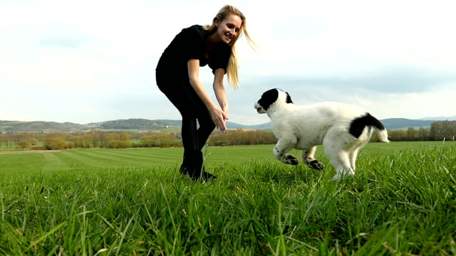 Young woman playing with puppy on field