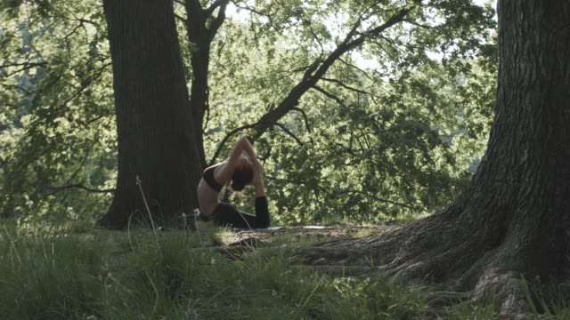 a young woman practices yoga early in the morning in nature - 4k - slow motion - cura della persona video stock e b–roll