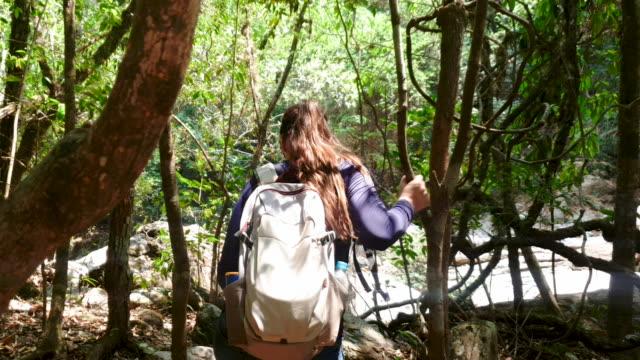 vídeos de stock, filmes e b-roll de jovem praticando caminhadas perto da cachoeira. - footpath