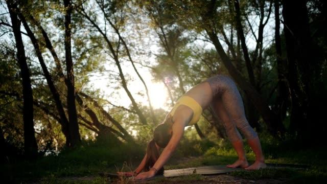自然の中でヨガを練習している若い女性 - 自制心点の映像素材/bロール