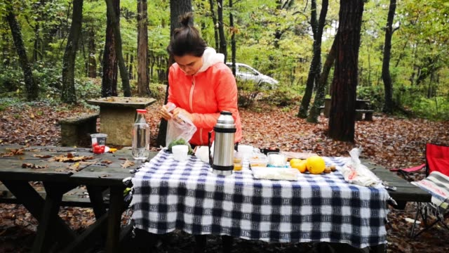 young woman preparing picnic breakfast table in forest - wood plate stock videos & royalty-free footage