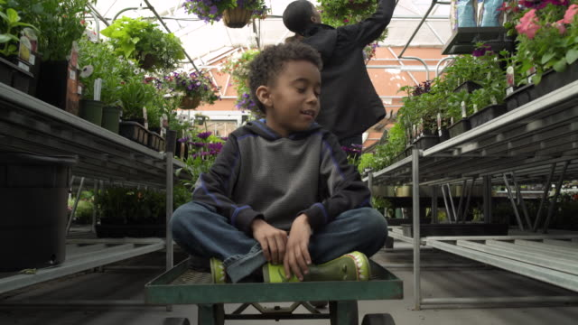 young woman pulling her son on cart in a greenhouse - whidbey island shop stock videos and b-roll footage