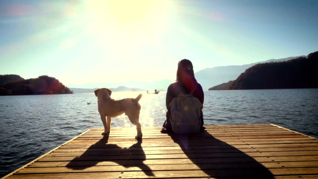 young woman relax sitting on pier at the lake with dog - molo video stock e b–roll