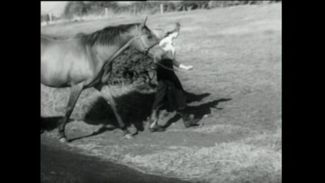 young woman releases mare and foal into paddock; 1955 - 1955 stock videos & royalty-free footage