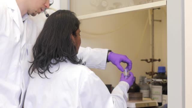 vídeos de stock, filmes e b-roll de jovem pesquisador colocar amostra científica em um shaker - amostra científica