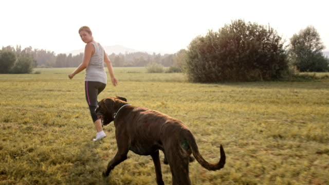 slo mo ts young woman running in the meadow with her boxer dog - boxer dog stock videos and b-roll footage