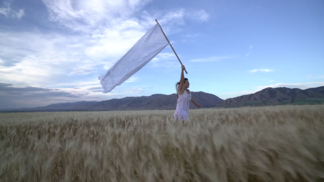 ws ts sm young woman running with a huge white flag in a field. - wheat stock videos and b-roll footage