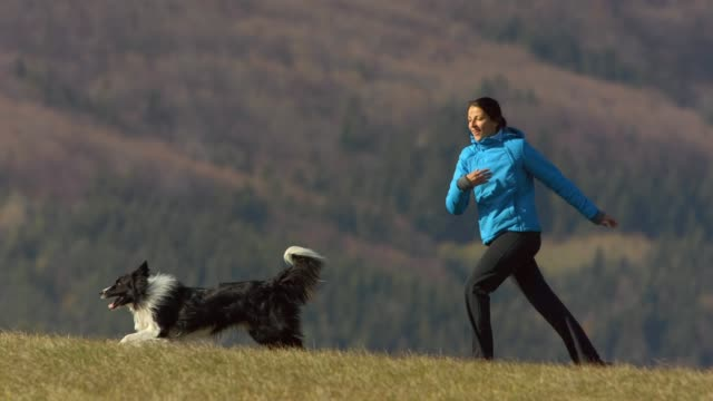 young woman running with her dog - purebred dog stock videos & royalty-free footage