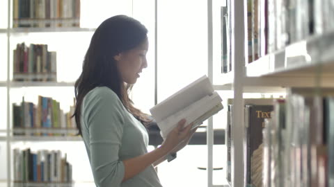 young woman searching for a book shelves in the library, reading book education - library stock videos & royalty-free footage