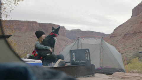 young woman sits by campfire scratching and talking to the dog in her lap. - moab utah stock videos & royalty-free footage