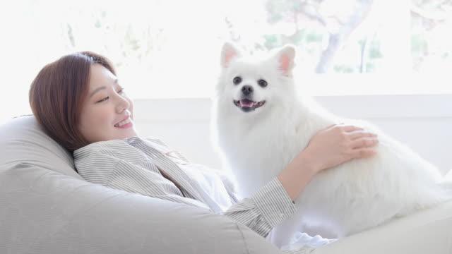 vídeos y material grabado en eventos de stock de a young woman sitting on a bean bag with her dog in living room - manos detrás de la cabeza