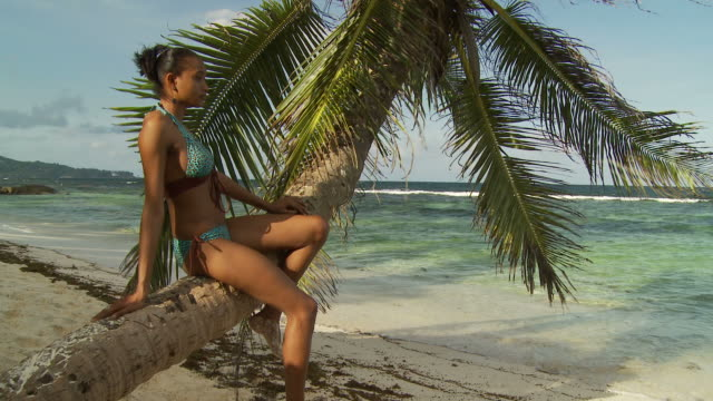 MS Young woman sitting on palm tree trunk looking at sea / Seychelles